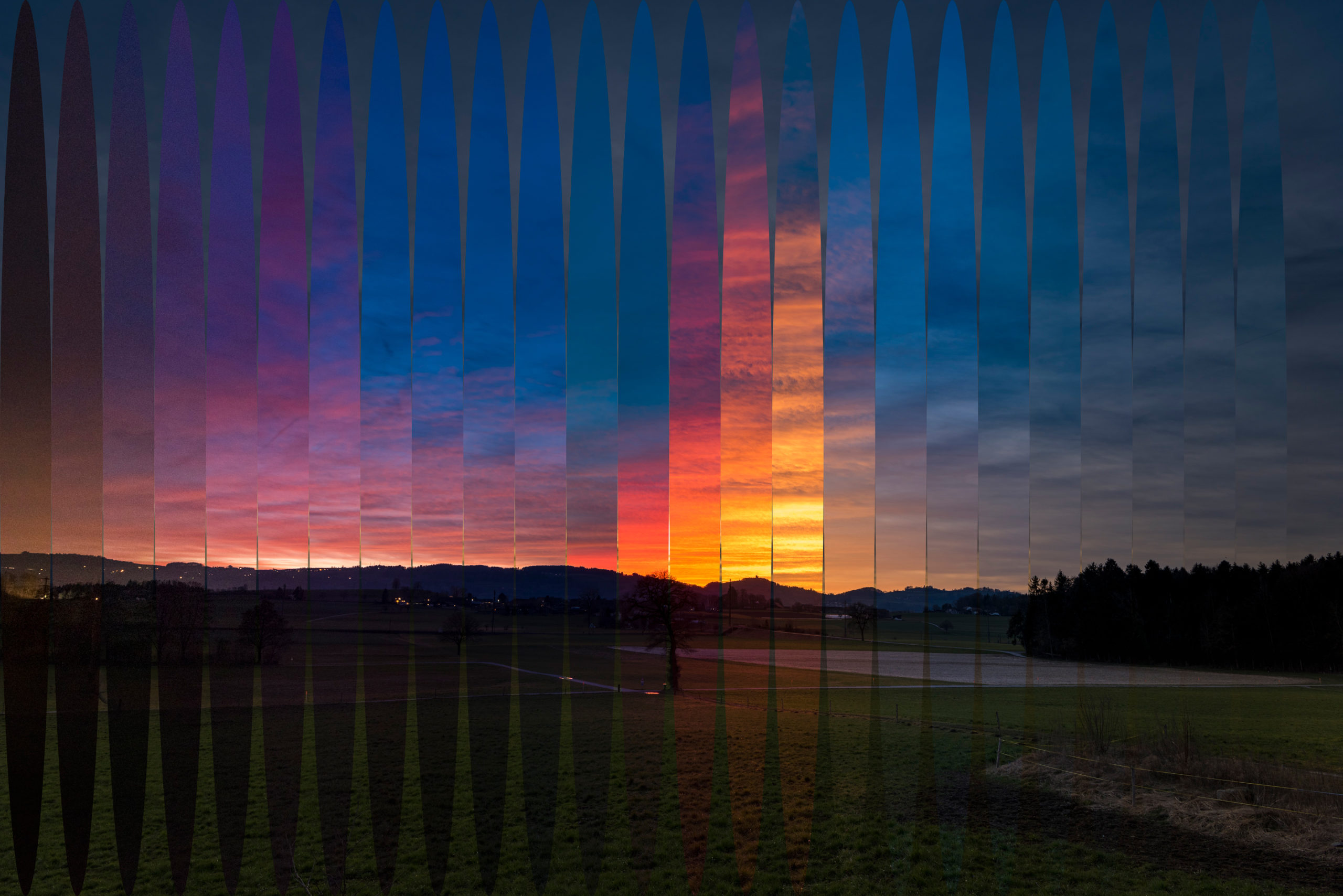 Circular Full-Image